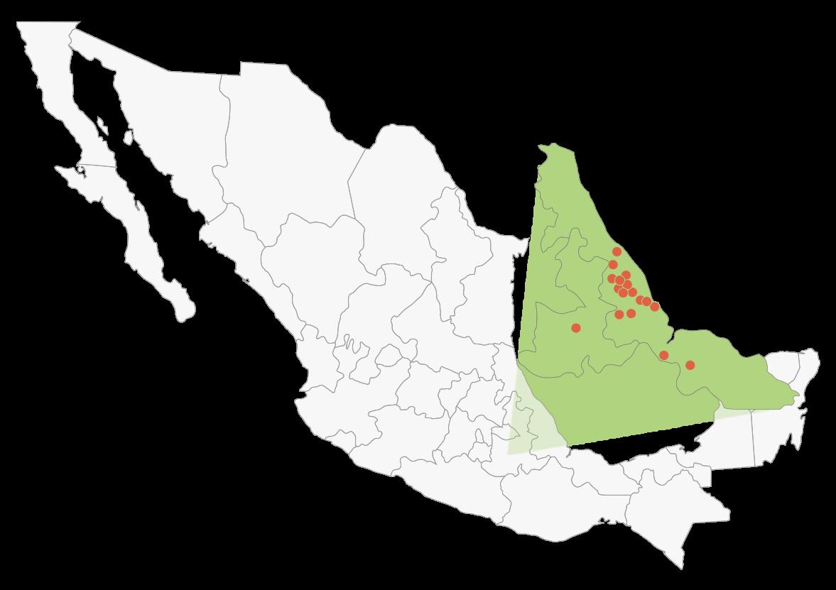 Mapa de México, resaltado zona de Puebla y Veracruz